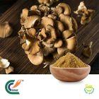Maitake Mushroom Extract 50% Polysaccharides by TRG