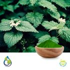 Nettle leaves powder (Steam sterilized) by S.A. Herbal Bioactives
