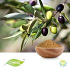 Olive Leaf Extract 10% Oleuropein HPLC by Comext