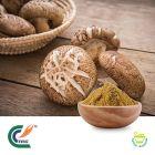 Shiitake Mushroom Extract 50% Polysaccharides by TRG
