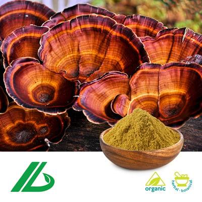 Organic Reishi Mushroom Extract 30% polysaccharide (25kg Drum) by Xian Laybio Natural Ingredients Co., Ltd