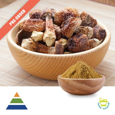 Agaricus Blazei Extract 10:1 (25kg Drum) by Shaanxi Kingsci Biotechnology Co., Ltd