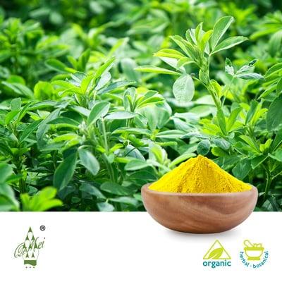 Organic Alfalfa Grass Powder by QIMEI INDUSTRIAL GROUP CO.,LTD