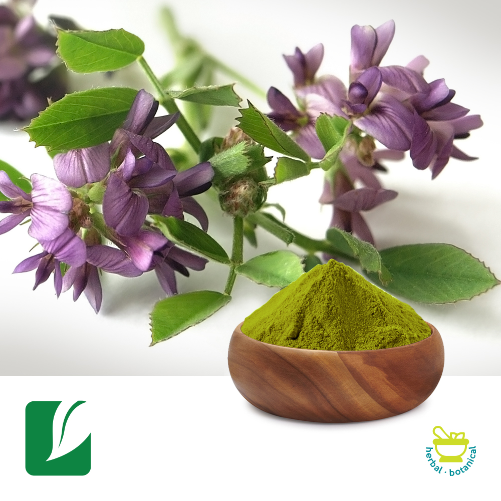 Alfalfa Juice Powder by Longze Biotechnology