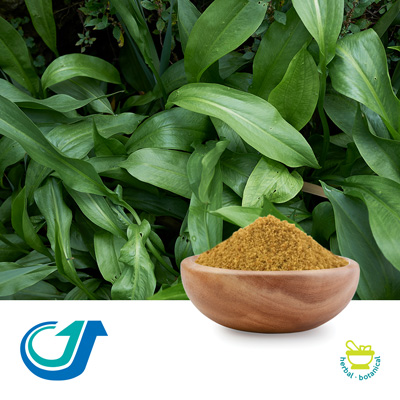Alisma Rhizome 8:1 Full-Spectrum Extract by Tianjiang Pharmaceutical Co., LTD.