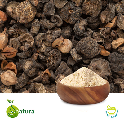 Amla Extract 40% Tannins by Natura Biotechnol Private Limited
