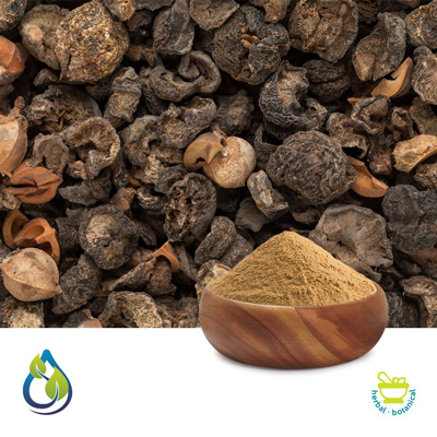 Amla Extract 40% Tannin by S.A.HerbalBioactives