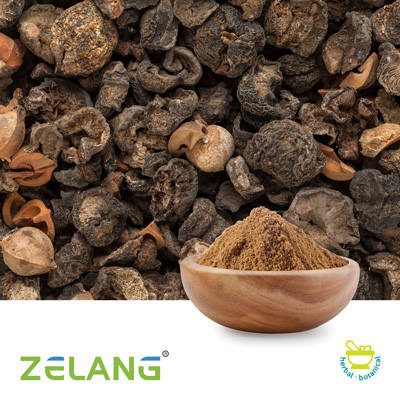 Amla Extract 40% Tannins by Nanjing Zelang Medical Technology Co., Ltd
