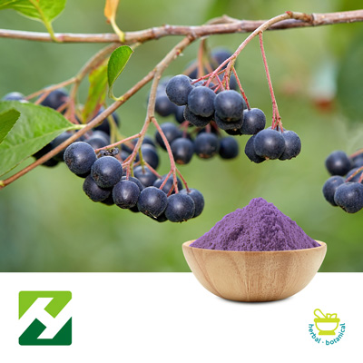 Aronia Extract 10:1 (25kg Drum) by Organic Herb Inc.