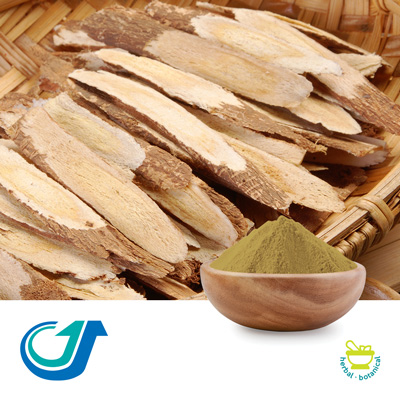 Astragalus Root 7:1 Full-Spectrum Extract by TianJiang