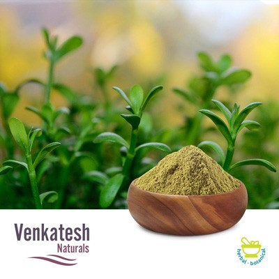 Bacopa monnieri Ext 40% UV by Venkatesh Naturals