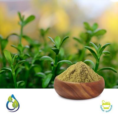 Bacopa Monnieri P.E. 20% UV by S.A.HerbalBioactives