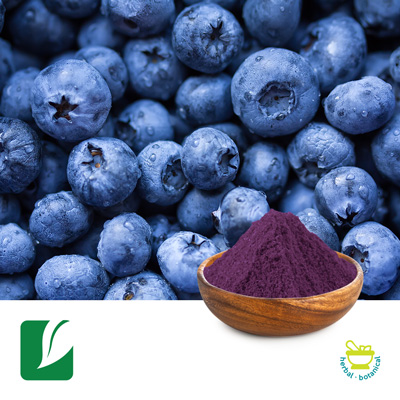 Bilberry Extract 25% Anthocyanins by Longze Biotechnology