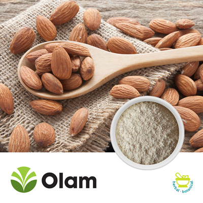 Blanched Defatted Almond Protein Powder by Olam