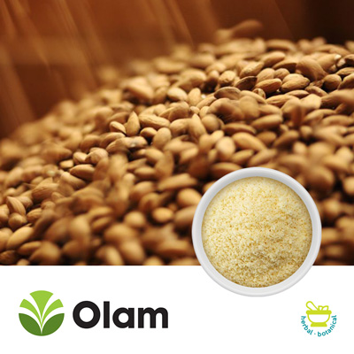 Blanched Fine Diced Almonds (Flour) by Olam