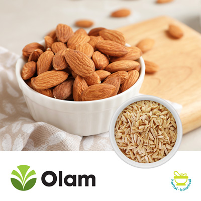 Blanched Slivered Almonds (2-4mm) by Olam
