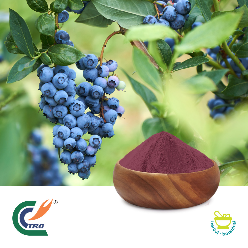 Blueberry Extract 10:1 by TRG