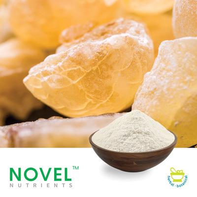 Boswellia Serrata Extract AKBA 30% by Novel Nutrients