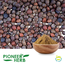 Broccoli Seed Extract Glucoraphanin 13% Powder by Pioneer Herb
