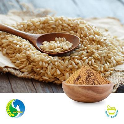 Brown Rice Protein 80% 300 Mesh by Panjin Hetian Food