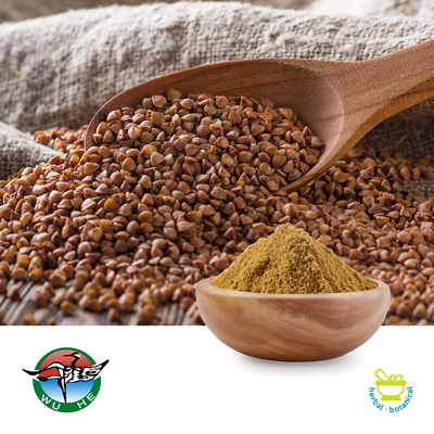 Buckwheat Extract 30% Rutin UV by Ningbo Traditional Chinese Pharmaceutical Corp.
