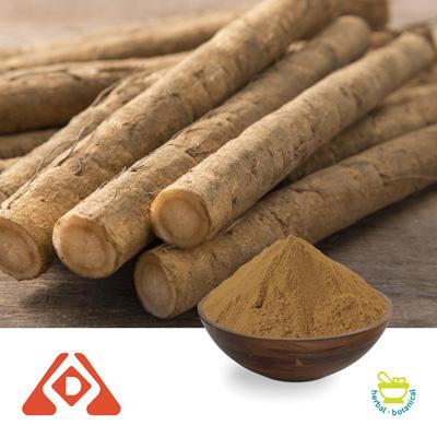 Burdock Root Extract 10:1 by Shaanxi Hongda Phytochemistry Co., Ltd