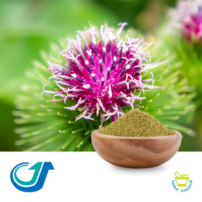 Burdock Seed 10:1 Full-Spectrum Extract by Tianjiang Pharmaceutical Co., LTD.