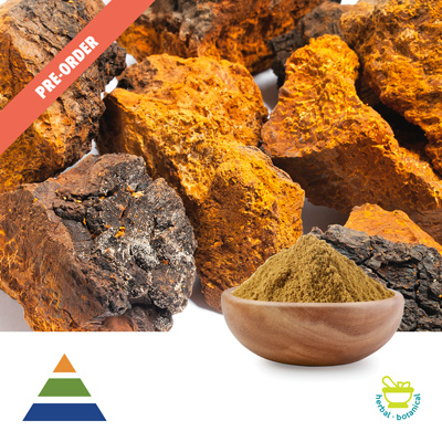 Chaga Mushroom Extract 30% Polysaccharides UV by KS Nutripharma