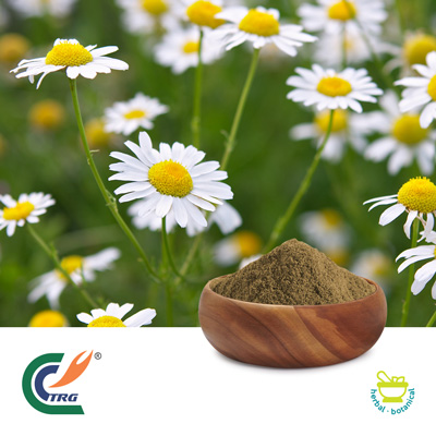 Chamomile Extract 10:1 by Hanzhong Trg Bioctech Co., Ltd.
