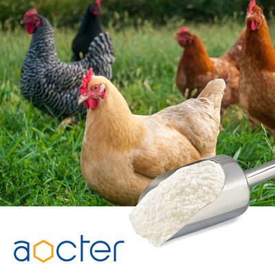 Choline Chloride 50% Silica by Aocter