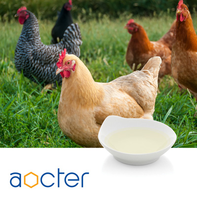 Choline Chloride 75% Liquid by Aocter