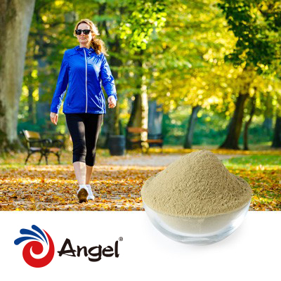 Copper Yeast Powder 50000ppm by Angel Yeast Co.,Ltd.