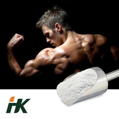 Creatine Mono 200 Mesh by HK Pharmaceutical Technology