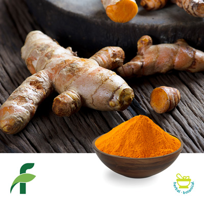 Curcumin 95% by Flora Natural Flavours and Extracts Pvt. Ltd