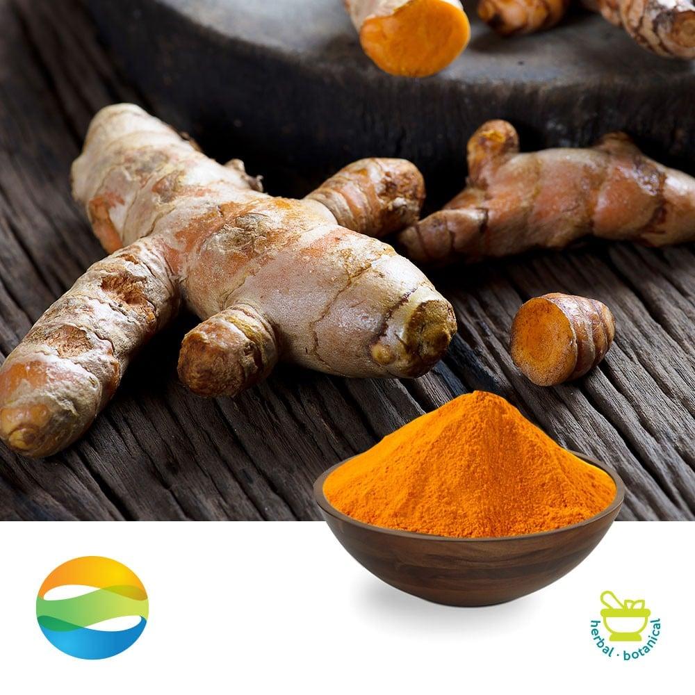 Turmeric Extract Curcumin 95% HPLC Regular by CCGB