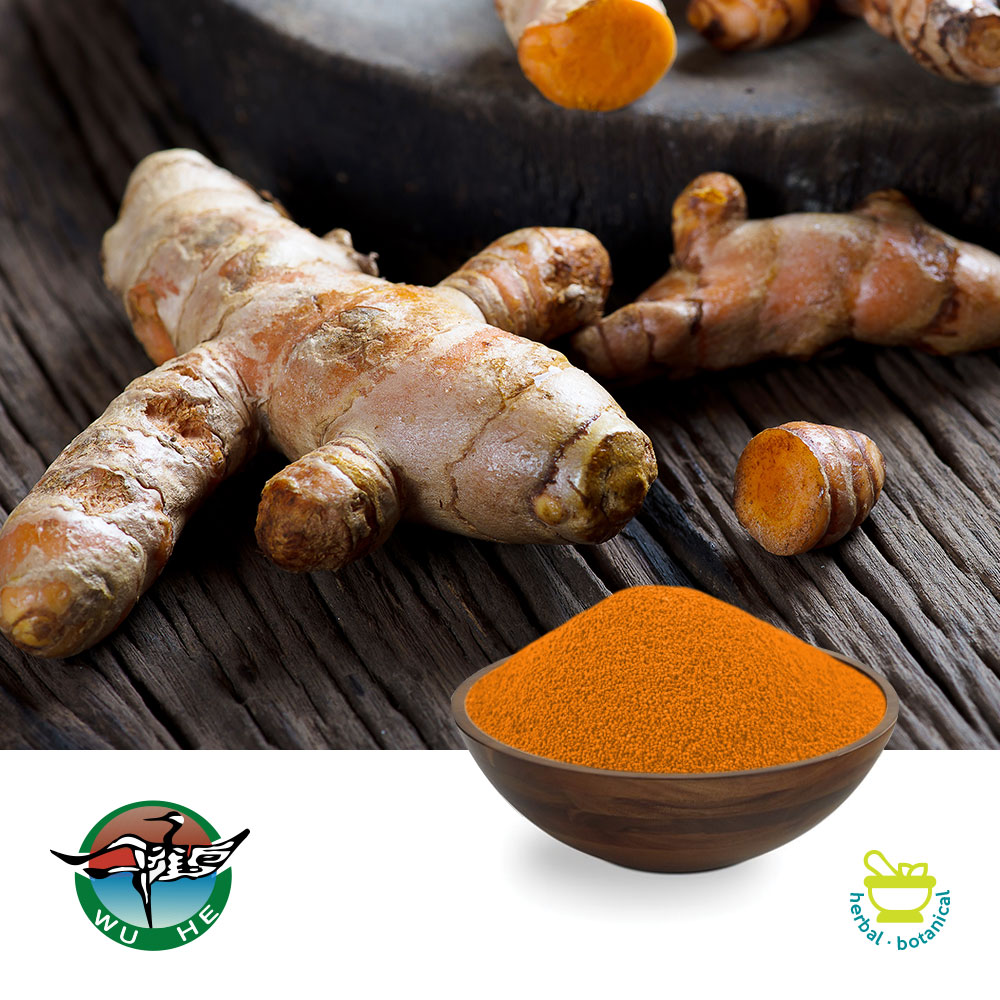 Turmeric extract 95% Curcuminoids Granular by Ningbo Traditional Chinese Pharmaceutical Corp.