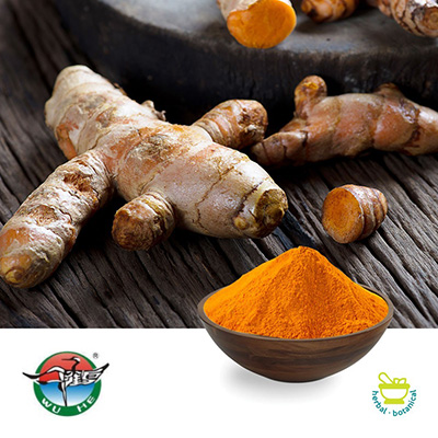 Turmeric Root Extract 20:1 by Ningbo Herb