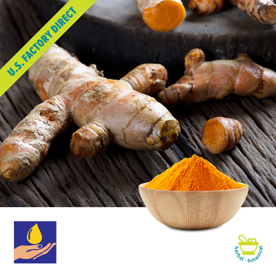 Curcumin Powdered Extract 95% by Sark Spice Products Pvt. Ltd.