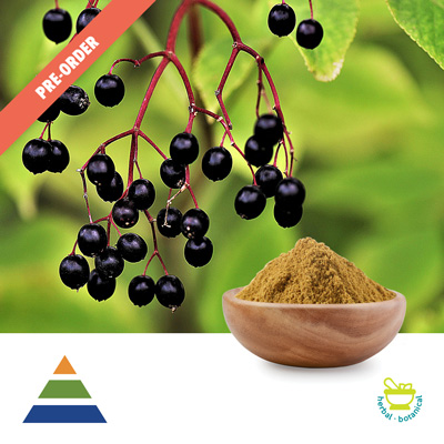 Elderberry Extract 10:1 (25kg Drum) by Shaanxi Kingsci Biotechnology Co., Ltd