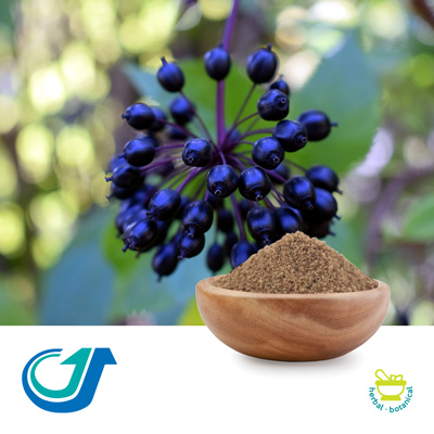 Eleuthero 5:1 Full-Spectrum Extract by Tianjiang Pharmaceutical Co., LTD.