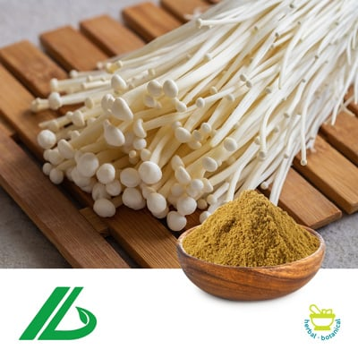 Enoki Mushroom Extract 30% Polysaccharide (25kg Drum) by Xian Laybio Natural Ingredients Co., Ltd