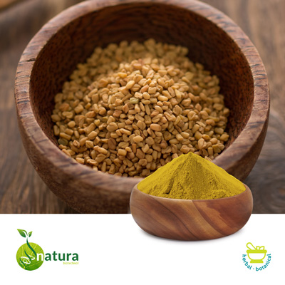 Fenugreek Extract 20% Saponins by Natura Biotechnol Private Limited