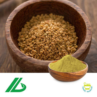 Fenugreek Seed Extract 50% Saponins (25kg Drum) by Xian Laybio Natural Ingredients Co., Ltd