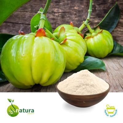 Garcinia Cambogia P.E. 50% HCA by Natura Biotechnol Private Limited