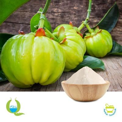 Garcinia Cambogia P.E 60% by Quad Lifesciences Pvt Ltd
