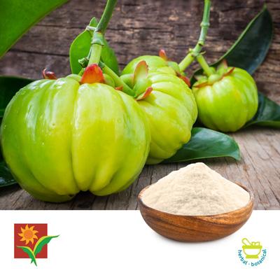 Garcinia Cambogia 50% HCA Granules by Umalaxmi Organics Pvt. Ltd.