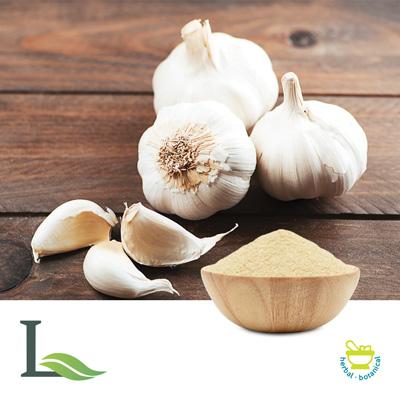 Garlic Powder by Lulin