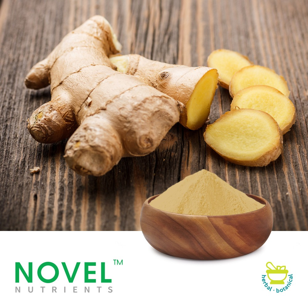 Ginger CO2 Extract 5% by Novel Nutrients