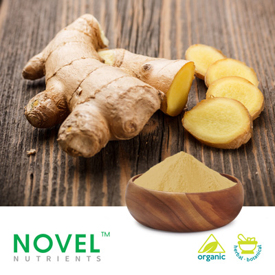 Organic Ginger Powder by Novel Nutrients Pvt., Ltd