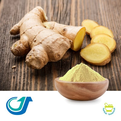 Ginger 6:1 Full-Spectrum Extract by TianJiang